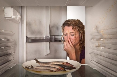 9 mẹo khử mùi hôi tủ lạnh hiệu quả, an toàn tuyệt đối